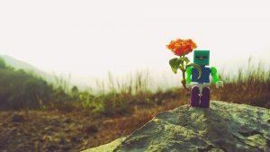 Sefima Lego