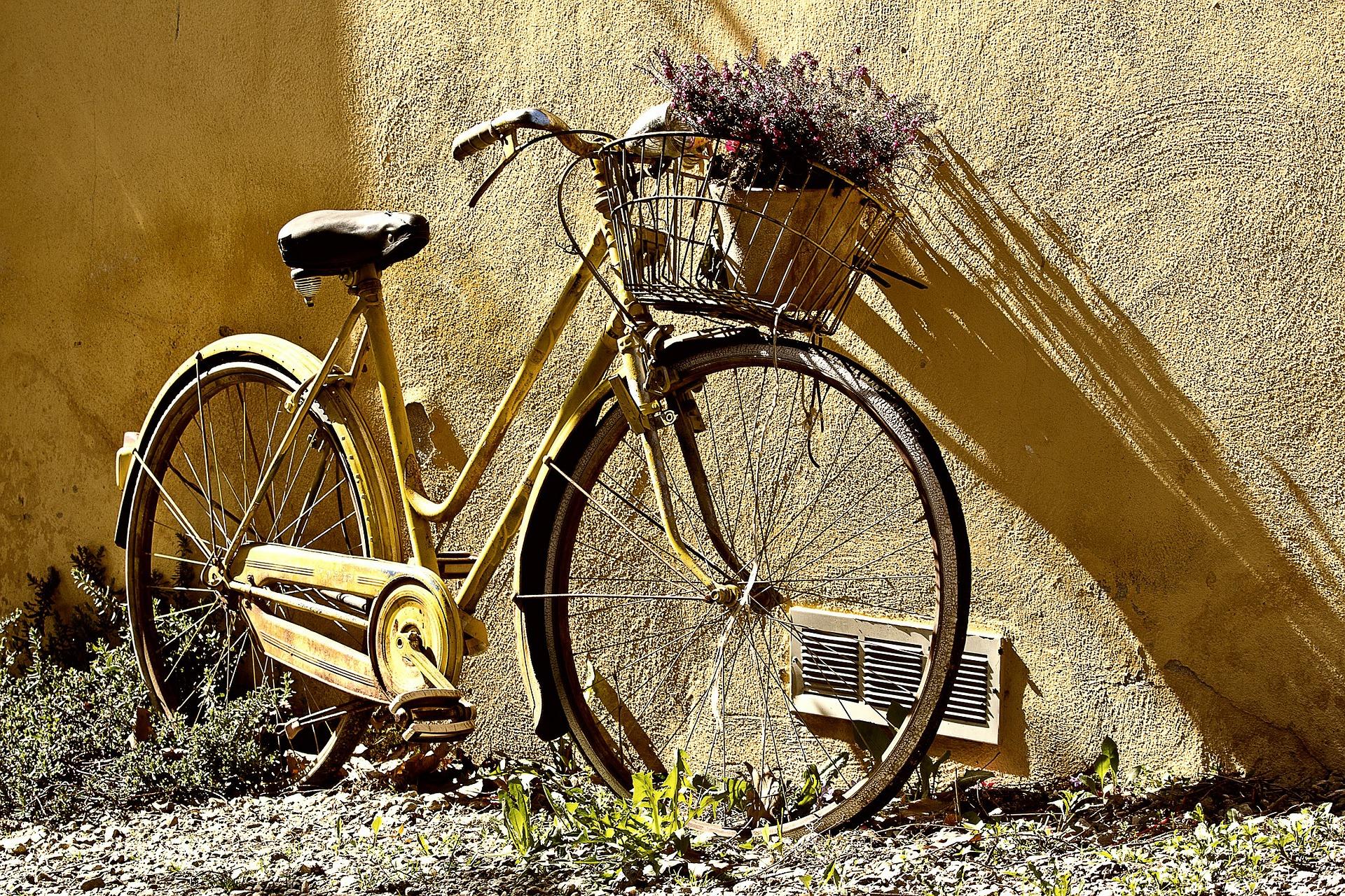 Fahrräder werden immer teurer – und verdienen Versicherungsschutz